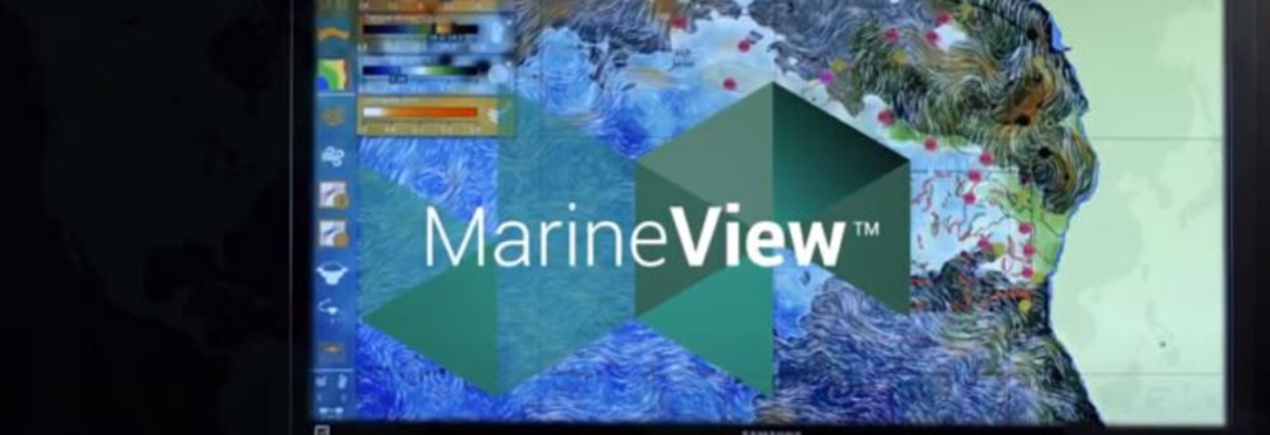 MarineView: Smart Fishing
