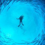 New Underwater Robotics Award Announced at SUT's AGM
