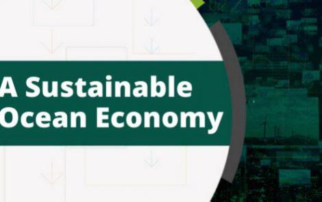 A Sustainable Ocean Economy